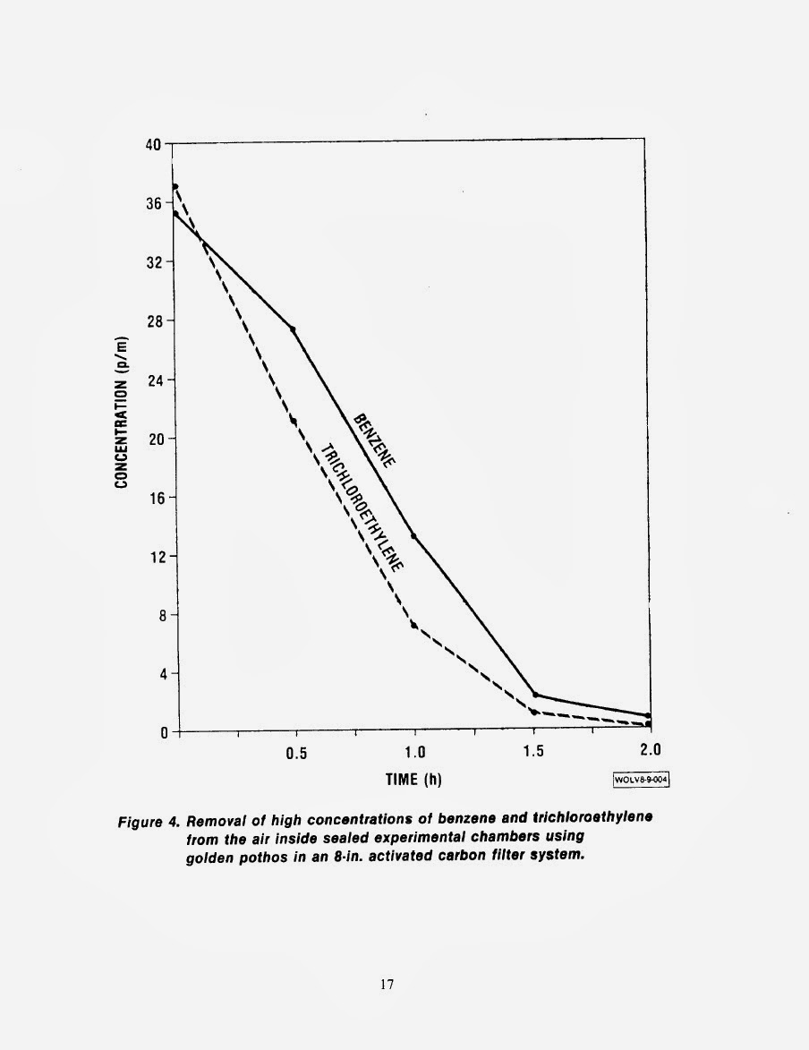 House of thol nasa 39 s 1989 study for clean air for Nasa air study