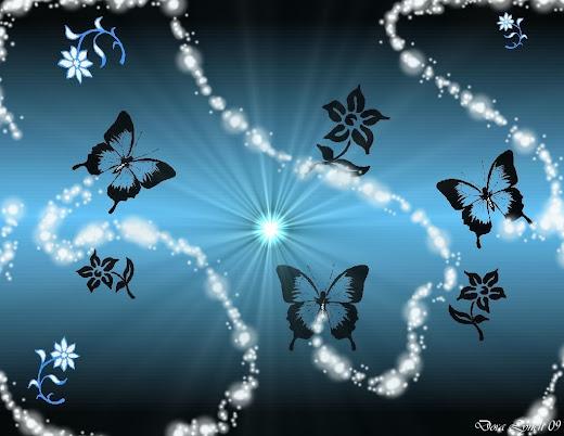 foto burung hantu @ digaleri.com