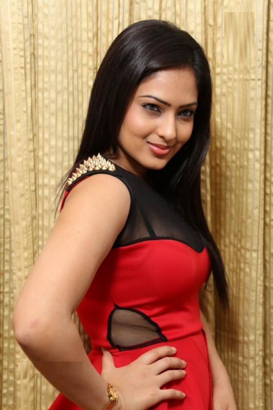 Telugu Cinema Nikesha Patel Hot Pics