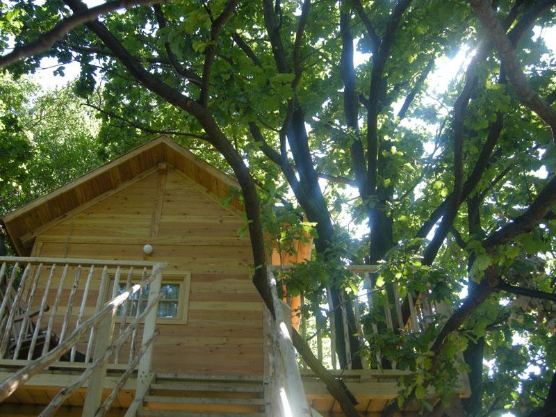 Doni 39 s made la capanna sull 39 albero - Il giardino dei semplici manta ...