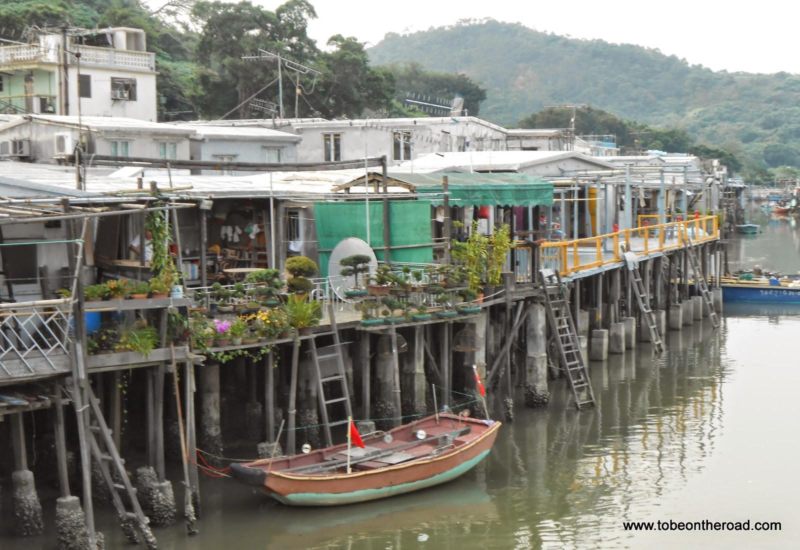 Cruise, Dolphins, Hongkong, South East Asia, Sunset, Tai O, Temple,