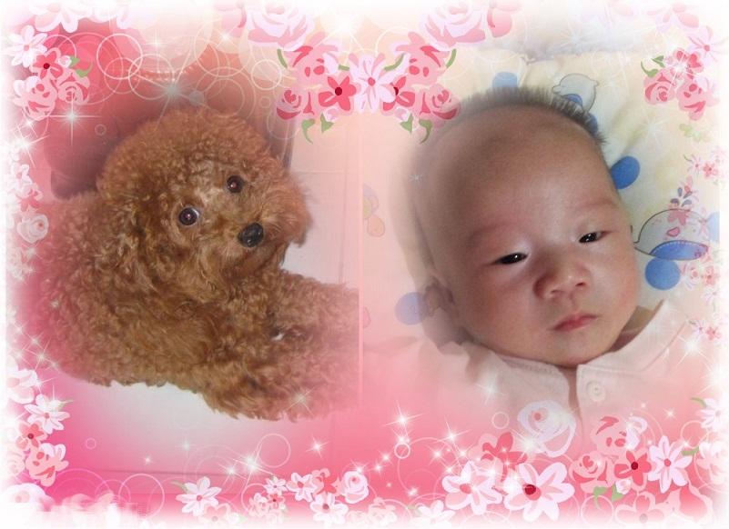 ♥宝贝儿之窝♥