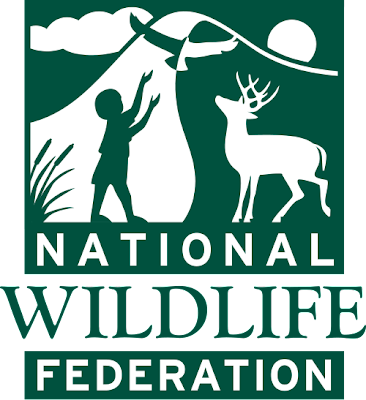 9 National%2BWildlife%2BFederation 10 of the Worlds Most Popular Non Profit Charity Institutions and Organizations