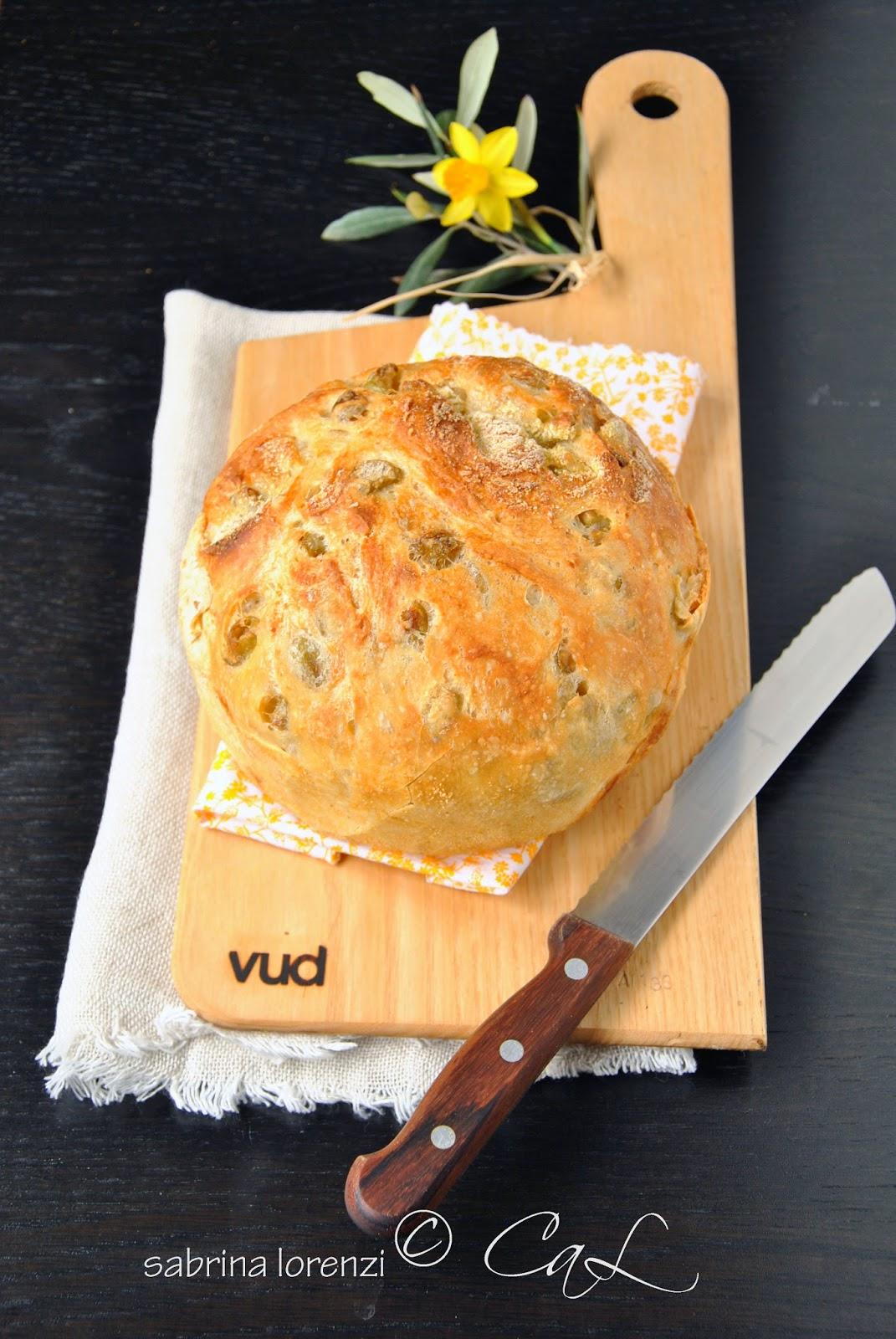 Pane senza impastare alle olive verdi testando le nuove - Nuove posizioni a letto ...