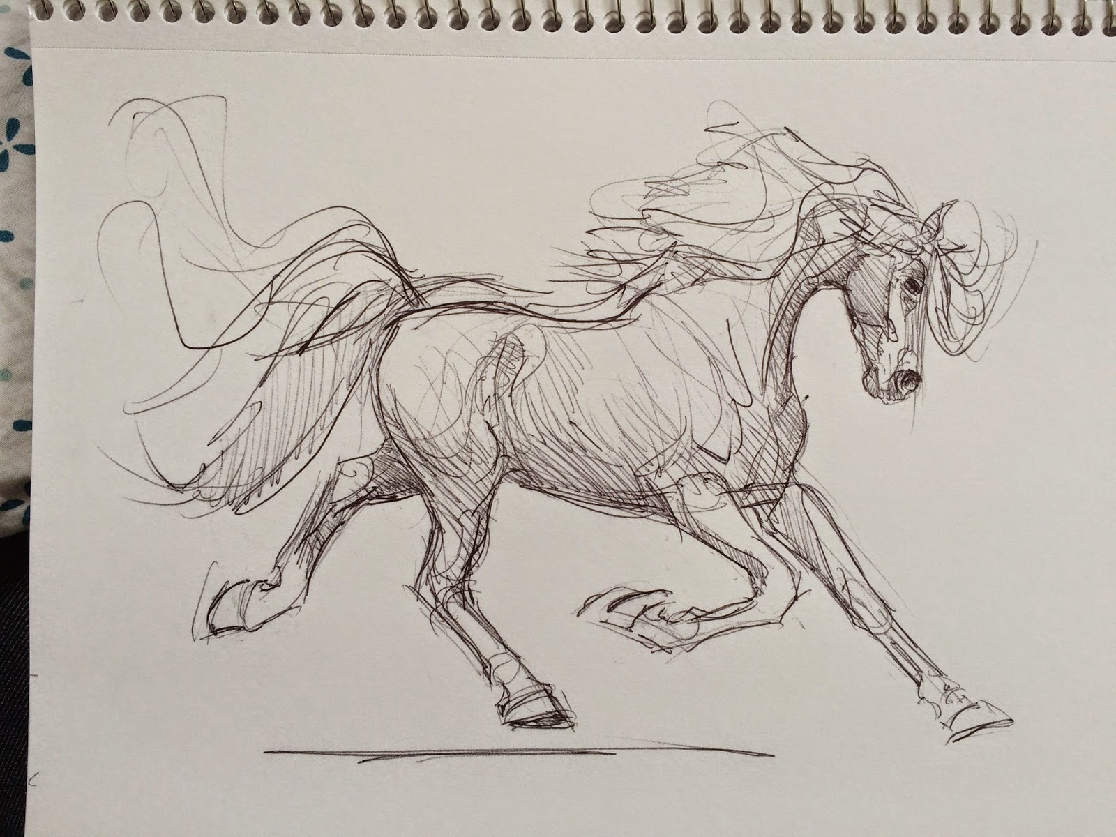 Cool   Wallpaper Horse Watercolor - TwoC%2BWC%2BhorsesProcess02  HD_85837.jpg