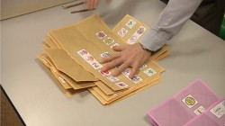 Elezioni 2013: voto all'estero
