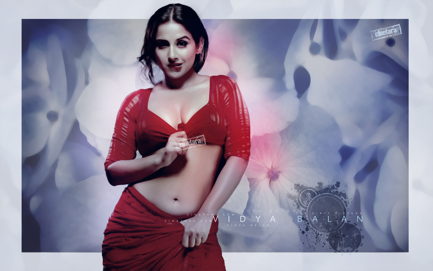 hd wall photos: smart and hot vidya balan