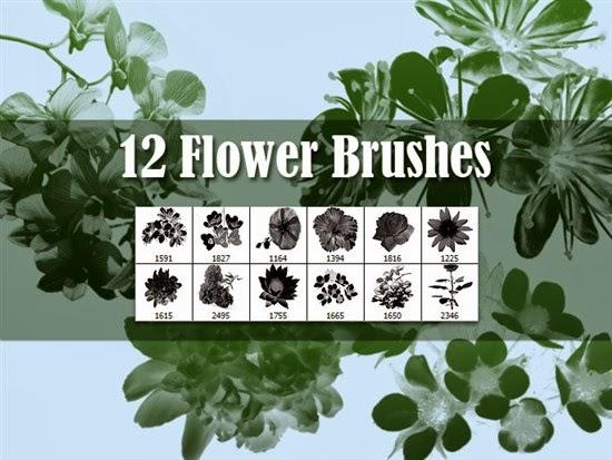 Photoshop Flowers Brushes
