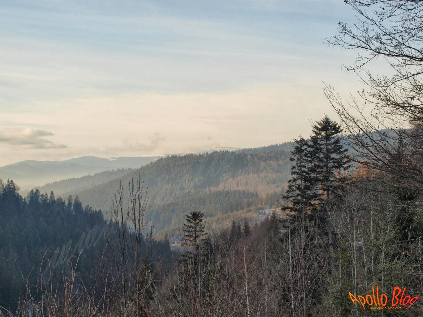 Vedere spre Toplita