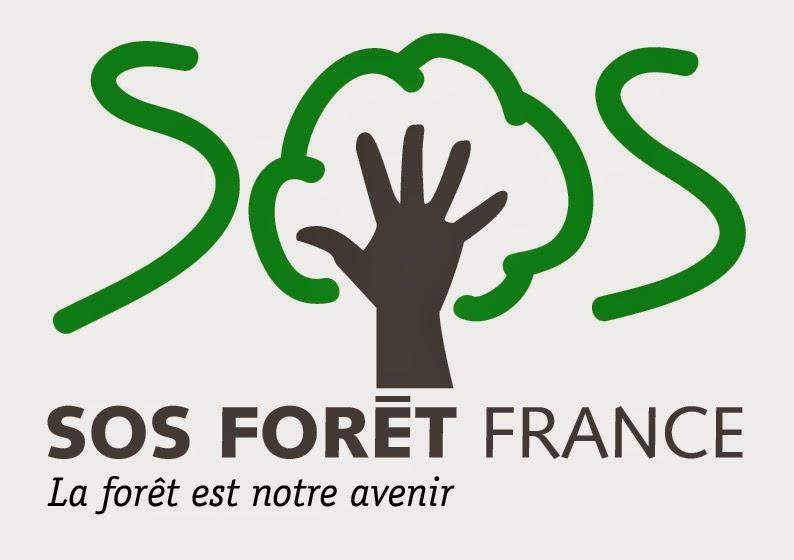 SOS Forêt
