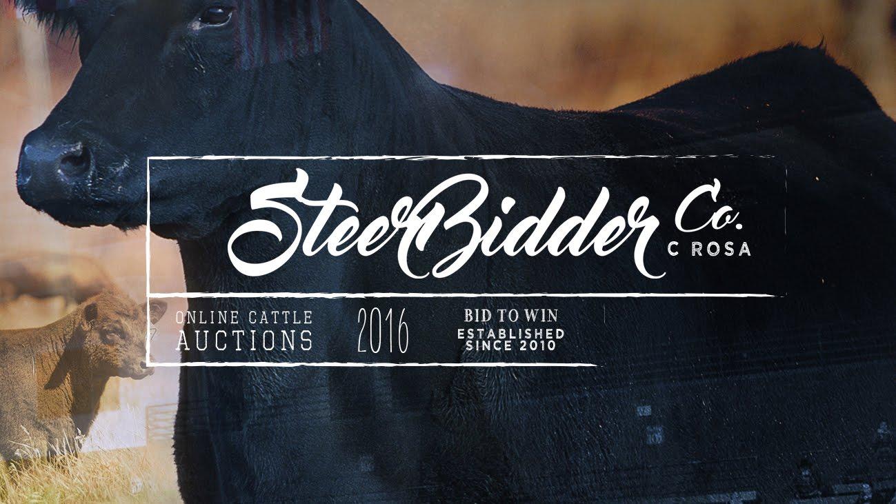 WWW.STEERBIDDER.COM