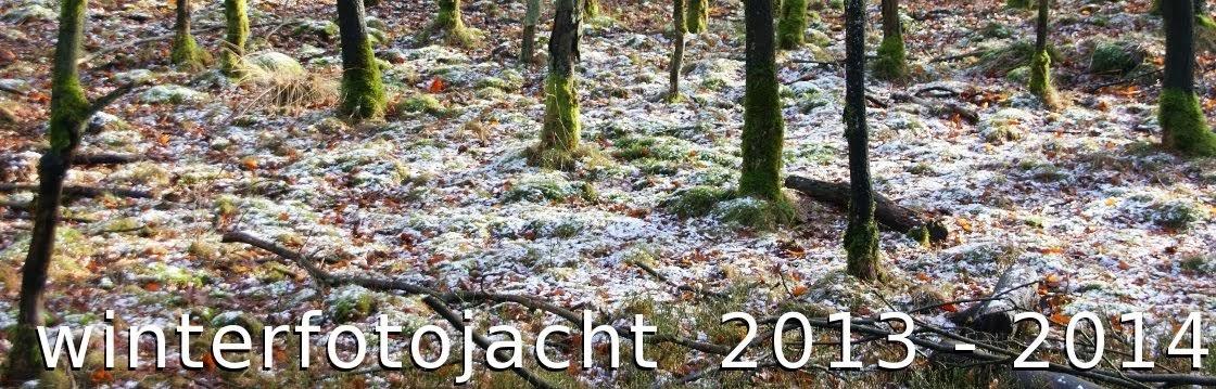 winterfotojacht 2013-2014
