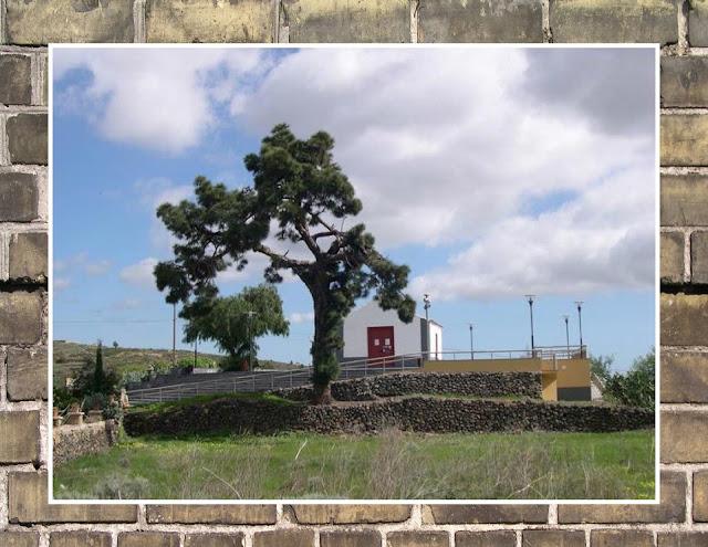 RINCONES DE TENERIFE: LAS VEGAS