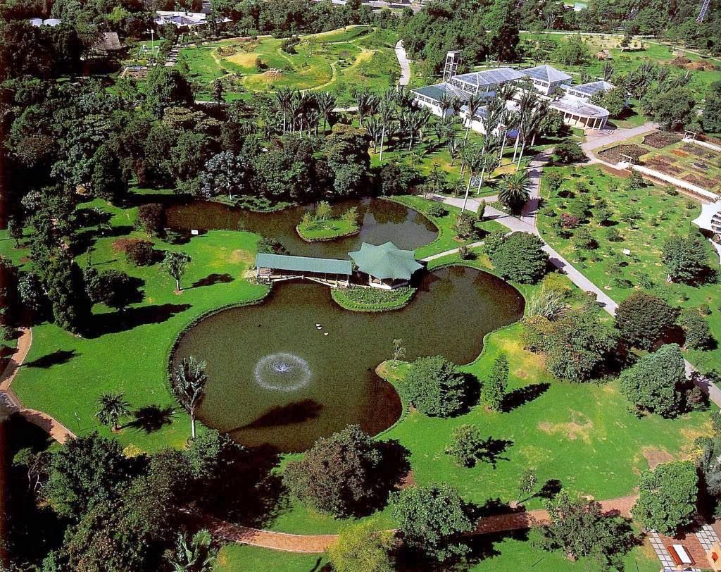 Conociendo la diversidad natural en el jard n bot nico de for Jardin botanico tarifas