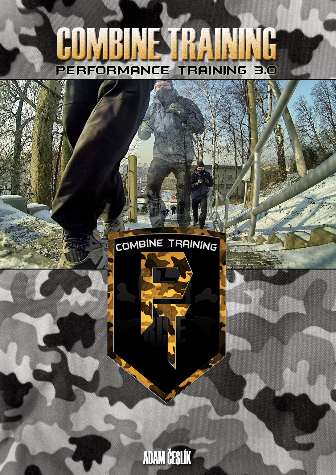 PT3.0: Combine Training