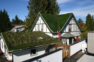 Modern Minimalist Design Home Roof