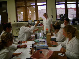 picture of students and instructor in wet lab doing experiments