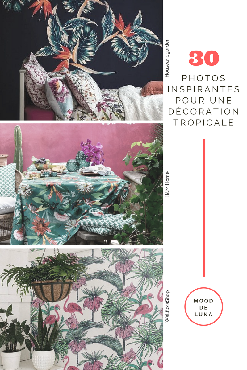 Home | Décoration tropicale