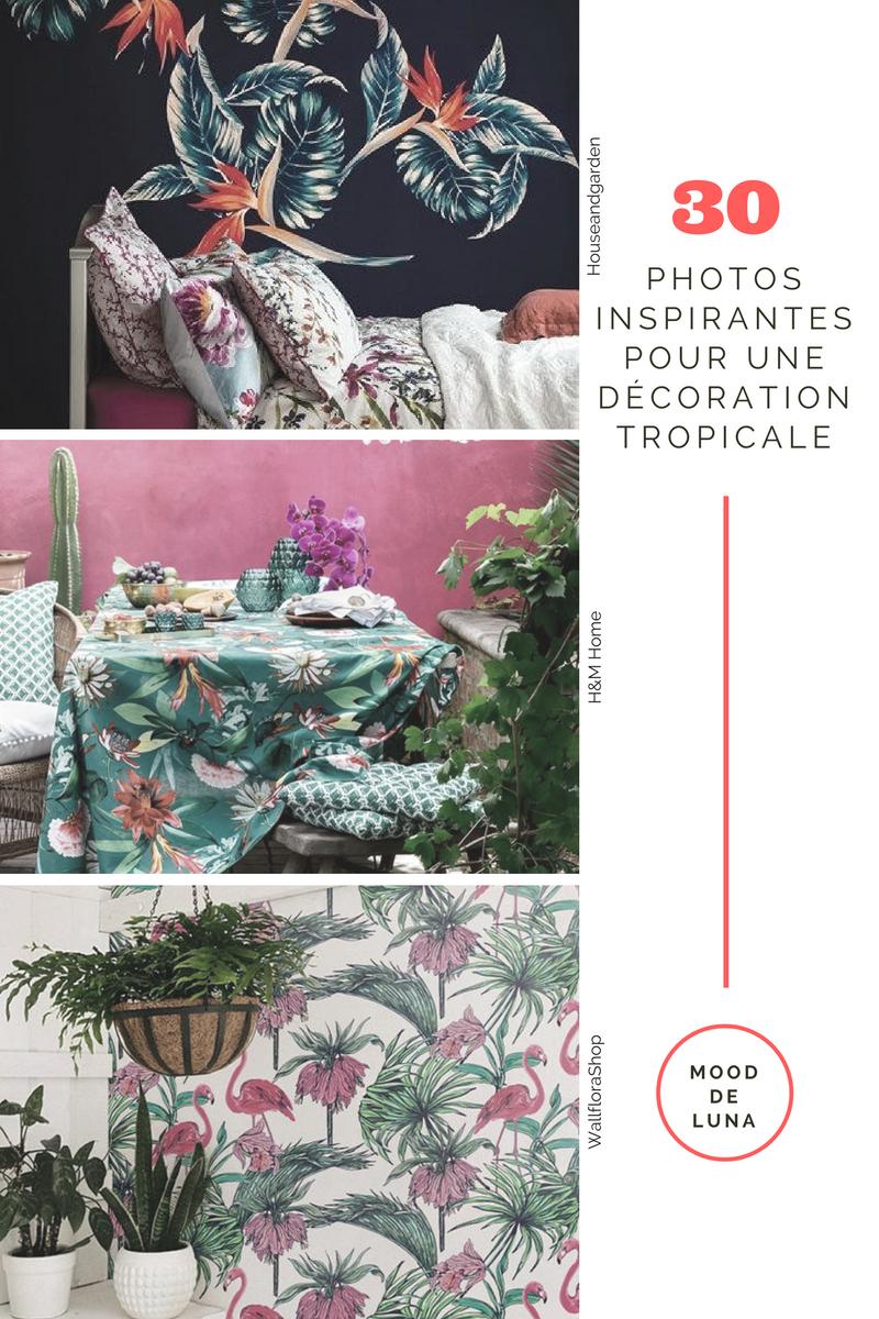 Home | Décoration tropicale