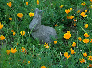 Bunny Sculpture in Informal Garden