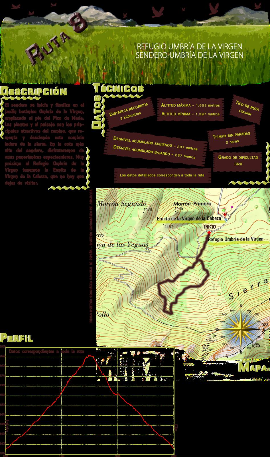 Ruta 8: Descripcion y datos tecnicos