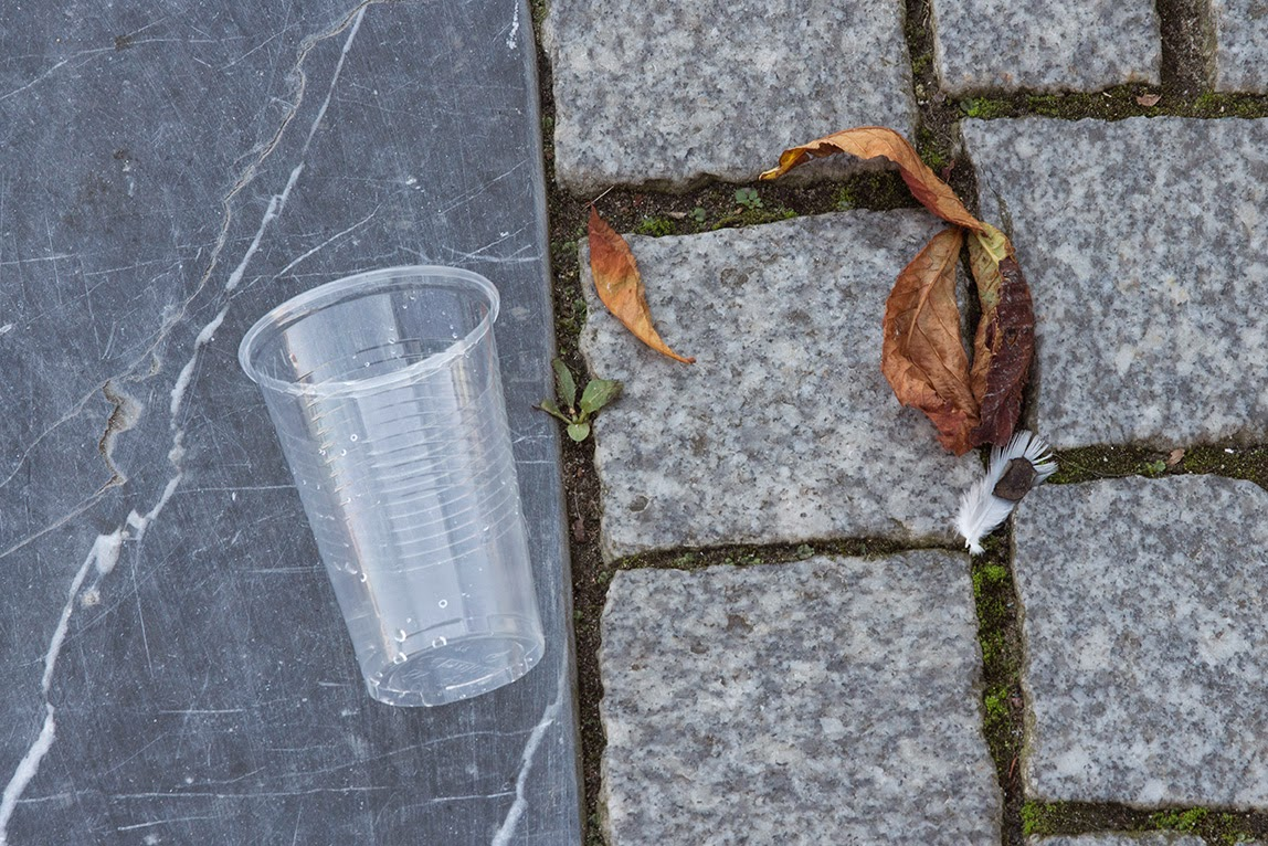 plastic cup and leaf