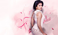 Amala Paul Hot SummerHD Wallpapers