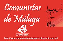 """Blog del Comité Provincial y Local """"Cayetano Bolívar"""" del PCA"""