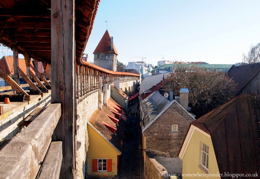 view from the top of Tallinn Old Town wall