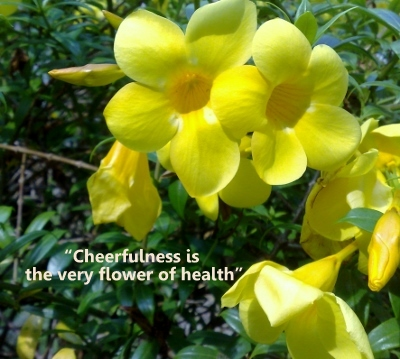 Healthy Life,Health