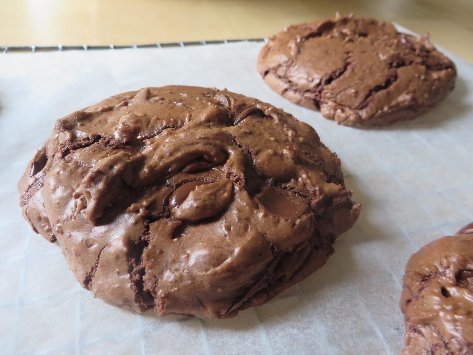 chocolade koekjes bakken met cacao