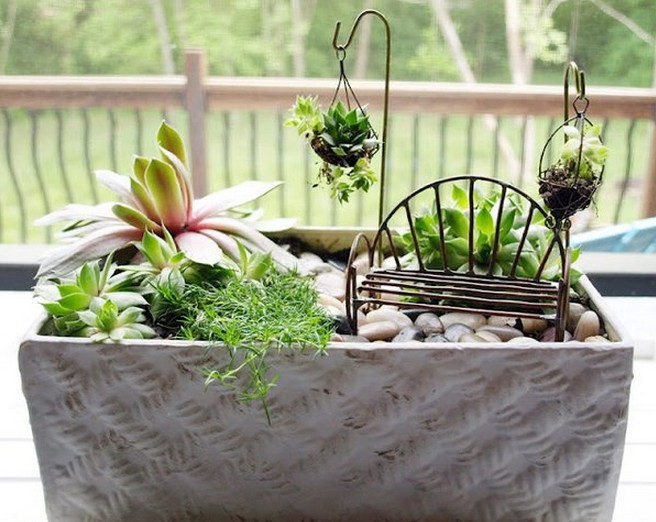 mini jardim de suculentas passo a passo : mini jardim de suculentas passo a passo: passo a passo de como preparar a terra de montar seu mini jardim