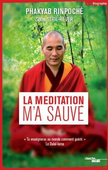http://www.buddhaline.net/La-meditation-m-a-sauve