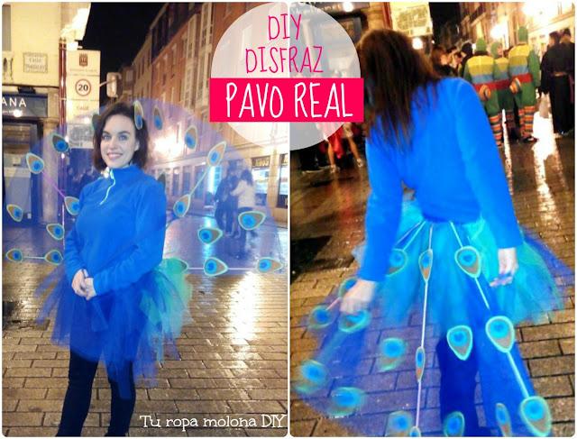 DIY disfraz de pavo real