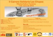 Carrera Los Chopos