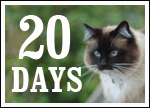 We've got 20 days to meet our GIANT $100,000 goal!