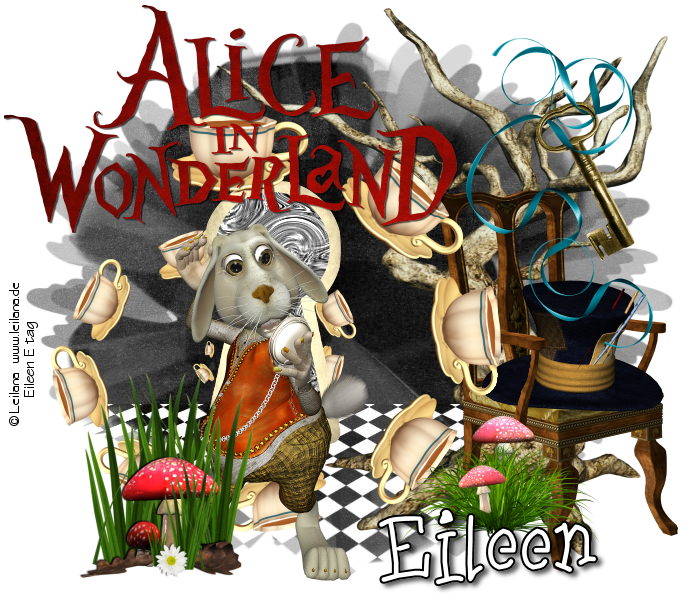 alices wonderland shohola pa police