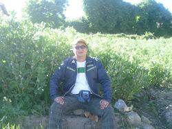Campos de abas en Pira