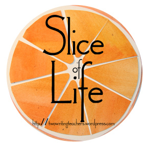https://twowritingteachers.wordpress.com/2015/07/07/tuesday-slice-of-life-story-challenge-5/