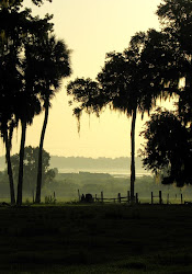 Sunrise Evinston, Florida