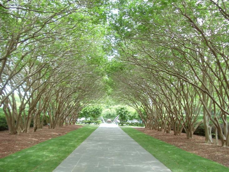 Spusht Dallas Arboretum Botanical Gardens