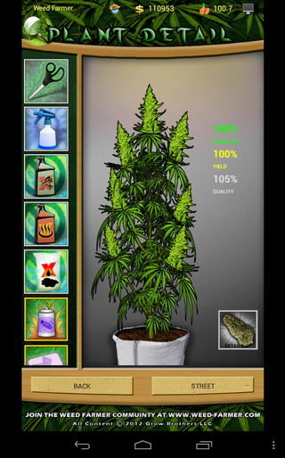 how to get real weed online