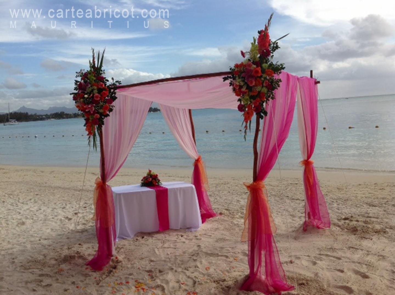 Exceptionnel Carte Abricot Wedding Planner à l'Ile Maurice: 2013 SR61