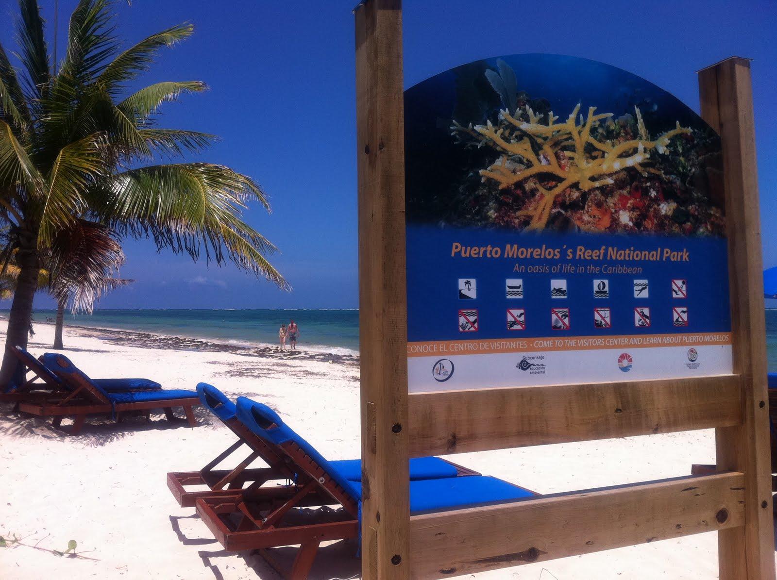 www hoteles discoverymexico com mx: