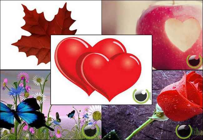 10 Simbol untuk Menujukkan Rasa Cinta pada Pasangan
