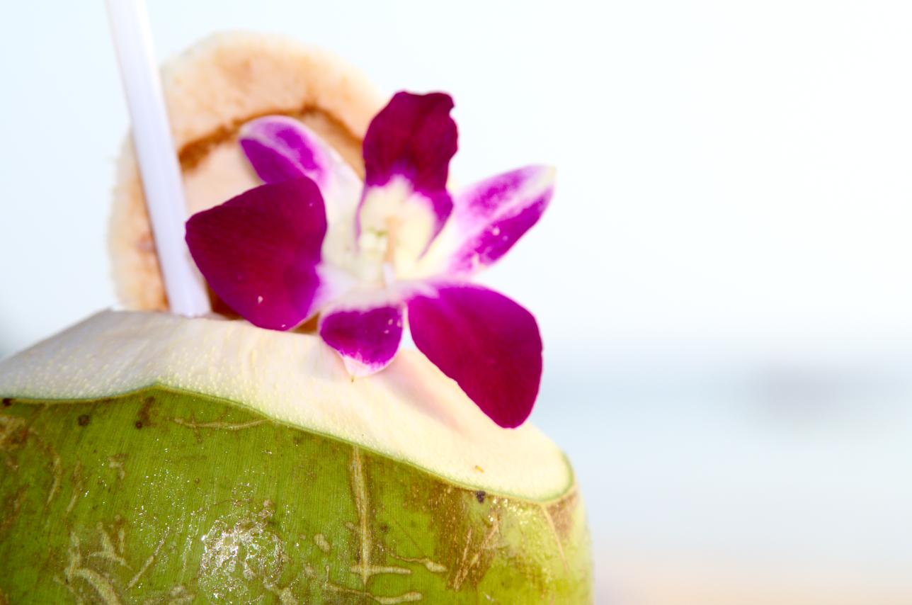Frischer Kokosnuss Shake mit Blüte