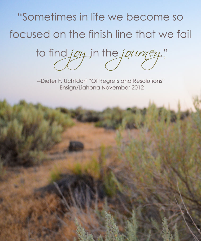Joy in the journey jpg