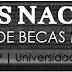 """Listado nacional de seguimiento de becas Nº4 - """"Avances tímidos pero importantes, aun sin resoluciones""""."""