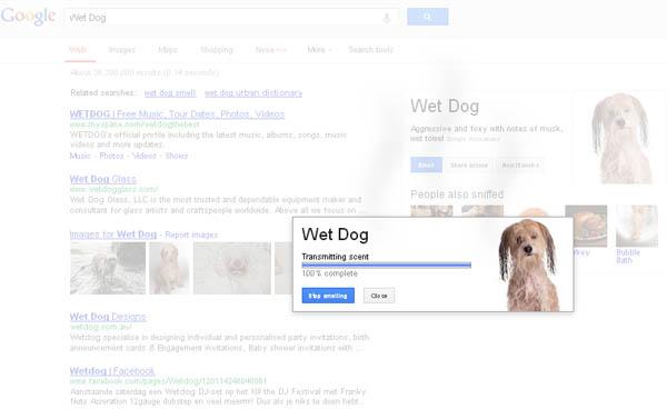 Google Nose - Smelling is Believing Wet Dog