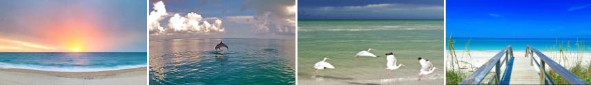 U.S. Beaches